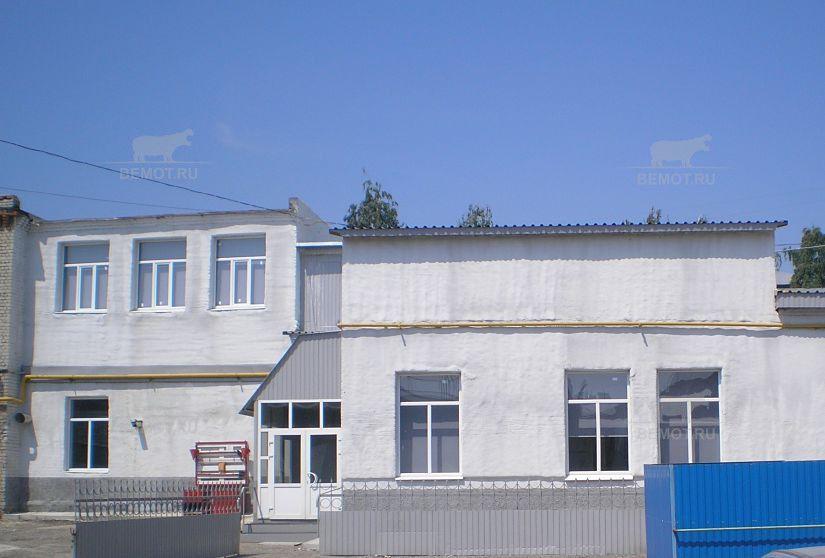Утепление стен фасада дома напылением пенополиуретана под покраску